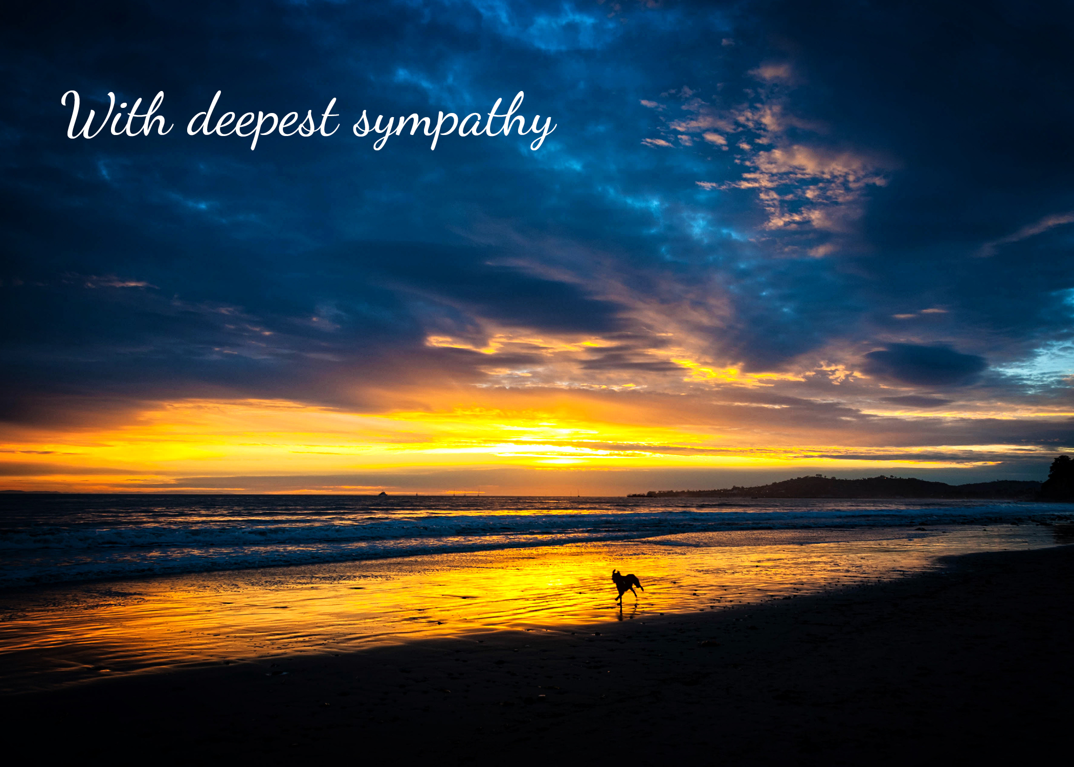 With Deepest Sympathy Sincere Condolences Beach Sunset Dog