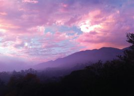 Sunset in the foothills, Santa Barbara, California