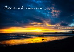 Butterfly Beach Sympathy Card-No Love More Pure