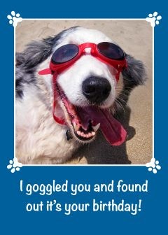I Goggled You - Birthday Card - Australian Shepherd